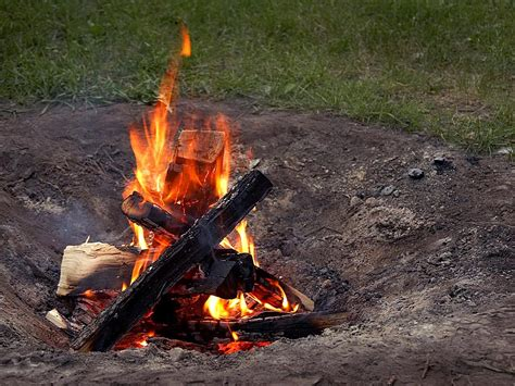 what of wood to burn in fireplace free picture cfires burning wood pits