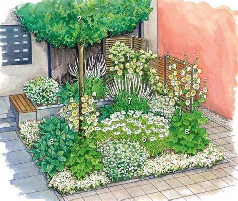 Blühende Pflanzen Schatten by Die Besten 25 Halbschatten Pflanzen Ideen Auf