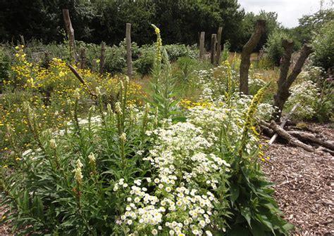Liedtke Garten Und Landschaftsbau Witten by Garten Und Landschaftsbau Witten Gartengestaltung In