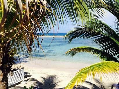 Jamaica Lady Resorts Palladium Grand Hamilton Beaches