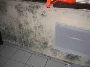 quelles sont les origines possibles d39un mur interieur With isolation humidite mur interieur