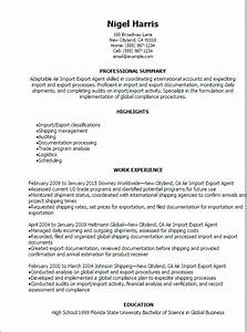 Air import export agent resume template best design for Import resume into template