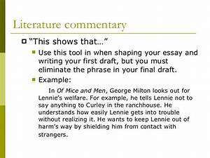 Commentary In An Essay Persuasive Essay Components Purpose Of  Commentary In An Essay