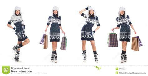 Scandinavian Winter Stock Image