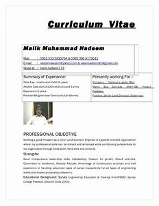 Surveyor Cv