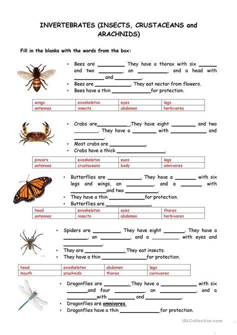 animals vertebrates  invertebrates worksheet  esl