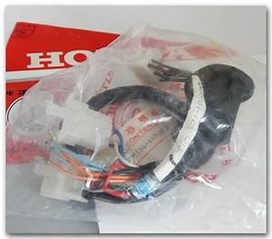 Hondaline Fairing - Parts Supply Store