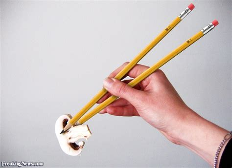 funny chopsticks pictures freaking news