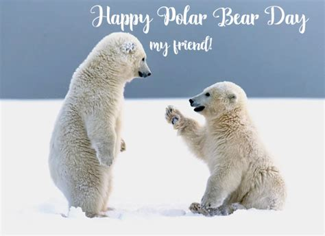 happy polar bear day friend polar bear day ecards