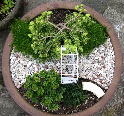 miniature japanese zen garden design photograph like a pie