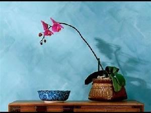 Peinture à La Chaux Extérieur : la peinture la chaux guide pratique ~ Dailycaller-alerts.com Idées de Décoration