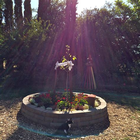 bodhi tree portland supernatural events xuanfa institute