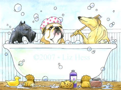 who are the three in the tub rub a dub dub 3 dogs in a tub liz hess gallery
