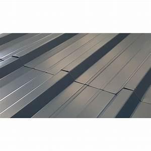 Tole Bac Acier Isolante : t le profil e 4m50 bac acier toiture et bardage bleu nuit ral5008 ~ Melissatoandfro.com Idées de Décoration