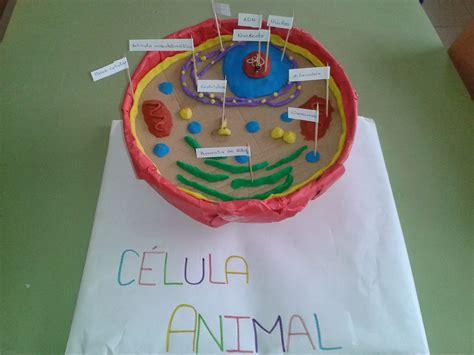 celula animal reciclable maqueta de celula animal materiales reciclable 17 melhores ideias