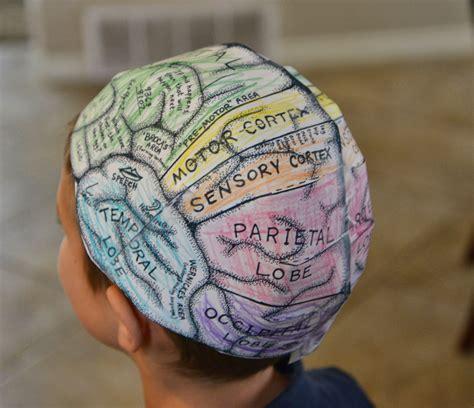 school  fish brain hats cerebral cortex