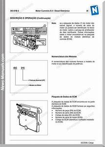 Cummins Engine 8 3l Service Manuals