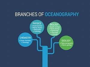 What Is Oceanography  A Complete Guide To Ocean Studies