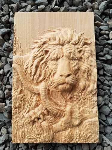projects     carve