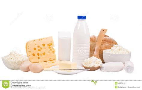 are eggs dairy dairy products stock photo image of food cheese products 49378110