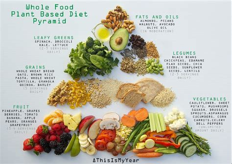 cuisine vegan whole food plant based diet pyramid for optimum health