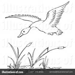 Duck Hunting Coloring Pages Free