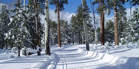 Winter in Flagstaff