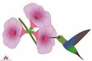 Hummingbirds and flowers clipart - BBCpersian7 collections