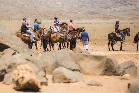 aruba riding horseback watersports activities sailing tennis beach