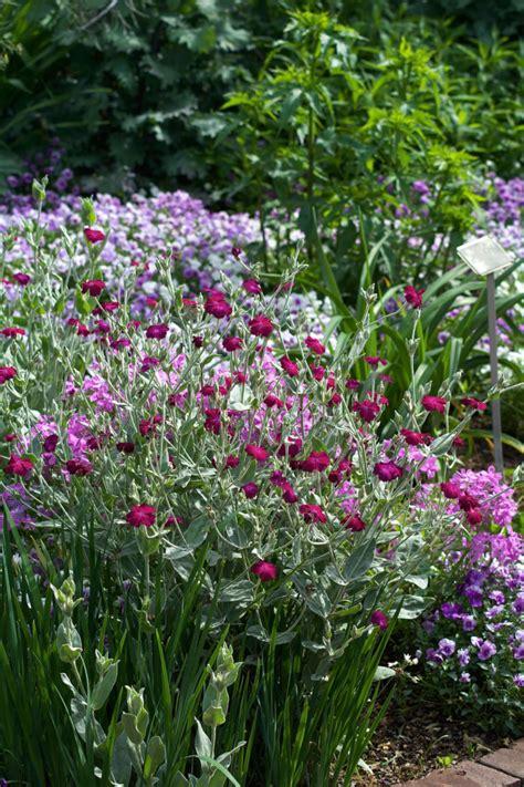 beautiful gardens  south carolina  visit