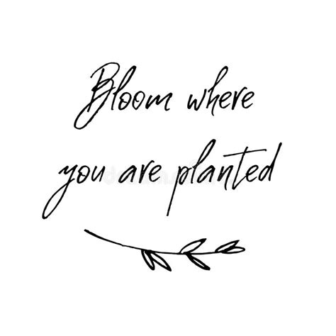 Such a sweet, positive message on this free svg that would make a cute design to add to a gardening shed or put on gloves as a gift for a family member who loves to garden. Bloom Where You Are Planted. Inspirational And ...