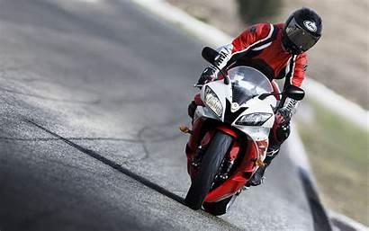 R6 Yamaha Yzf Helmet Dog Sportbike Motorsport