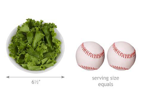 mydietanalysis whats  serving size