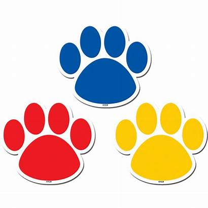 Paw Colorful Clipart Prints Background Transparent Tiger