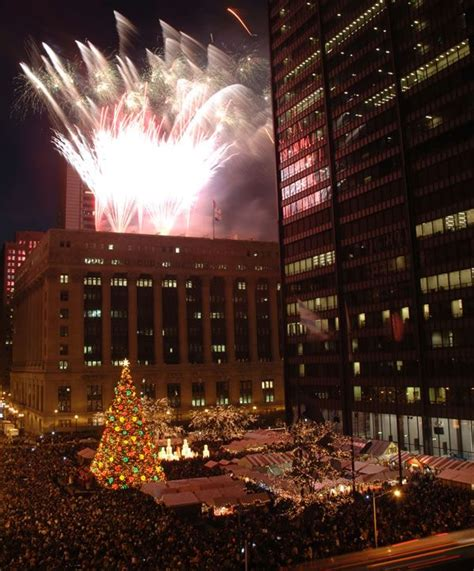 25 best ideas about chicago christmas tree on pinterest