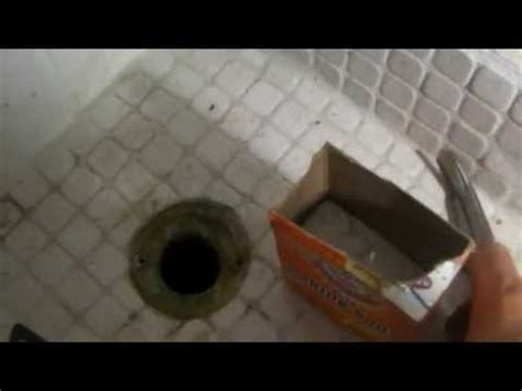 Drain Flies Removal Bathroom by How To Get Rid Of Drain Flies Aka Drain Gnats