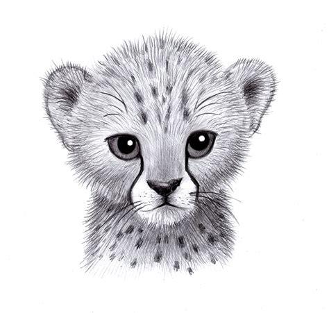 baby cheetah weasyl