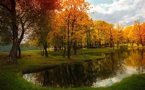 landscape nature pond fall bicycle trees reflection