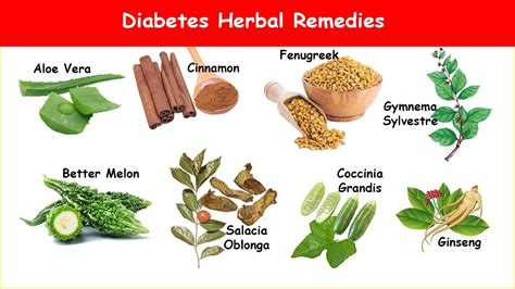 diabetes herbs  blood sugar ac youtube