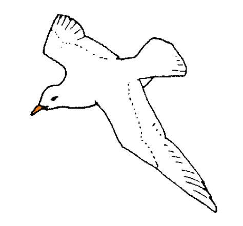 Disegno Gabbiano - disegno gabbiano colorato da utente non registrato il 09