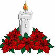Poinsettia clipart animated - Pencil and in color ...