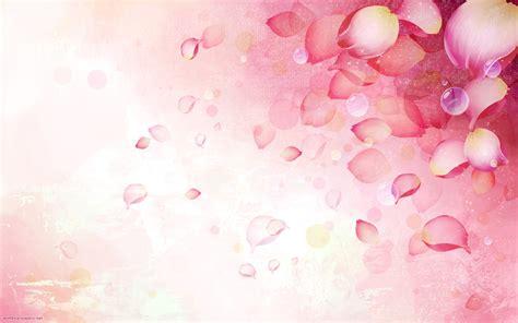 fresh petals hintergrundbilder stieg rosa schmetterling blumen
