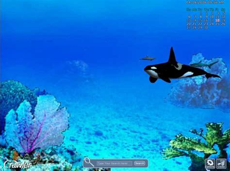 sea aquarium 2 for 1 28 images rws sea aquarium related keywords suggestions rws sea