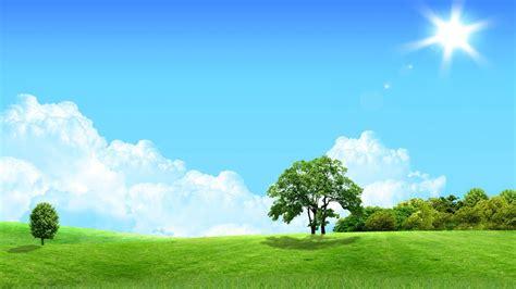 bäume schneiden im sommer die 75 besten sonne hintergrundbilder