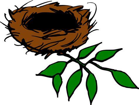 Bird Nest Aerie · Free Vector Graphic On Pixabay