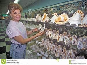 Woman Holds Shells At The Shell Factory, Fort Myers ...
