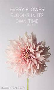 Positive Quote: Every flower blooms in its own time. -Ken ...