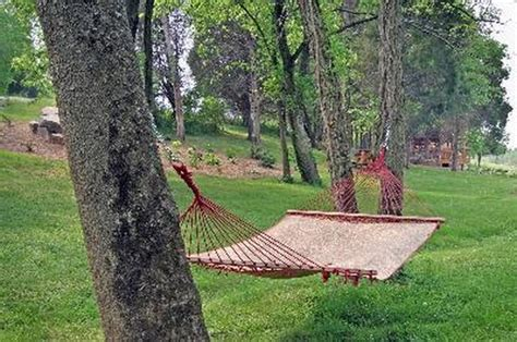 How To Hang A Hammock Between Trees by How Far Apart Should Trees Be For A Hammock Hunker