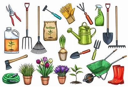 Tools Gardening Flowers Giardinaggio Strumenti Sketch Illustrations