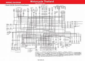 Polisport Halo Crf 230 Wiring Diagram